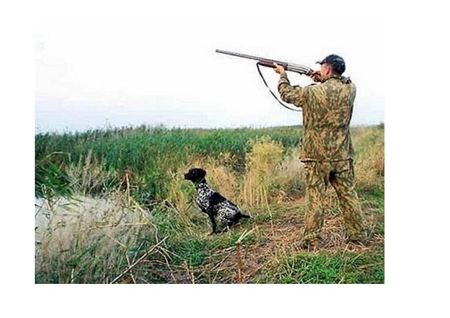 Верхнепышминское общество охотников и рыболовов