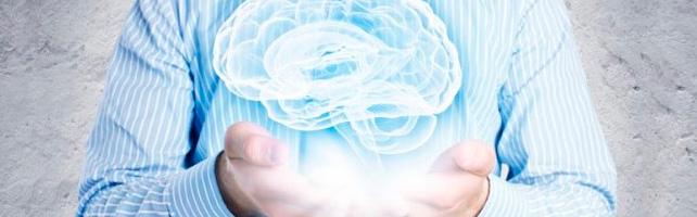 Автономная некоммерческая организация Клинический Институт Мозга