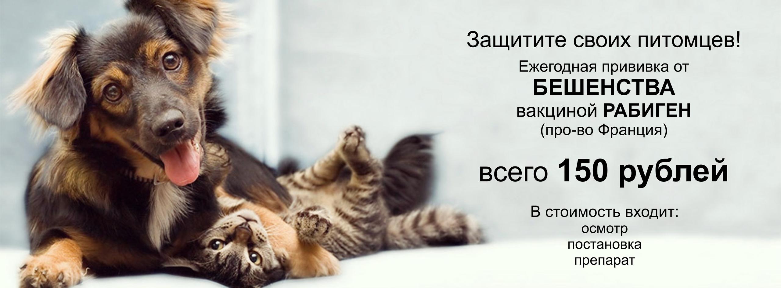 ИП Мыльникова Т.Е.
